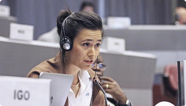 Ioana Botezatu, Departamentul Securitatea Mediului din cadrul INTERPOL