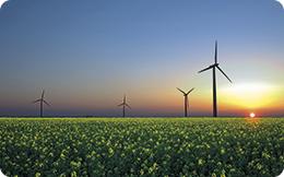 Cotă obligatorie de energie regenerabilă de 12,3% pentru 2017