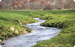 Reducerea poluării apelor de suprafaţă a fost reglementată