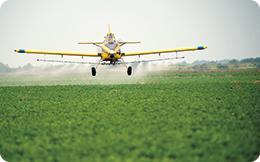 Pulverizarea insecticidului