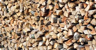 Noi reglementări pentru valorificarea lemnului