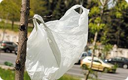Pungile din plastic subțire cu mâner vor fi interzise din 2019