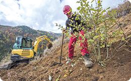 Proiect LIFE+ de 5,8 milioane euro: 428 de hectare plantate cu 1,2 milioane de puieți