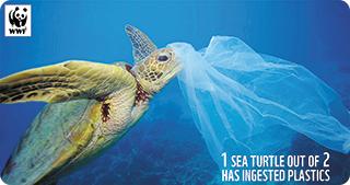 """Mediterana este de patru ori mai poluată cu microplastice decât """"insula de plastic"""" din Pacificul de Nord"""
