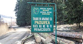 Un nou scandal a apărut între membrii Asociaţiei Agent Green şi Romsilva