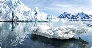 Poluarea cu plastic din Arctica ia proporții îngrijorătoare