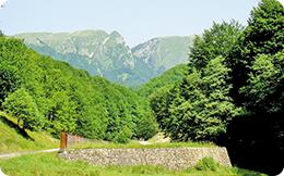 """Statut de geoparc UNESCO pentru zona """"Oltenia de sub munte"""""""