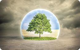 Cât le pasă europenilor de mediul în care trăiesc